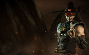 Picture ghost, Mortal Kombat X, revenant, Kung Lao