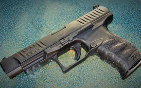 Picture Gun, Walther, PPQ M2