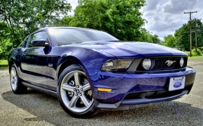 Picture mustang, ford, ford mustang