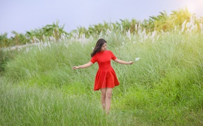 Picture field, summer, girl, red, dress, Asian