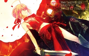 Picture girl, smile, the inscription, petals, dress, saber, art, daggers, fate/stay night, saber extra, takeuchi takashi, …