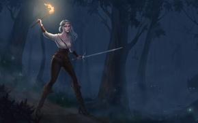 Wallpaper Cirilla, look, Witcher 3: Wild Hunt, art, green eyes, girl, night, animals, torch, forest, fire