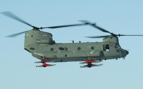 Picture helicopter, military transport, Chinook, Chinook, CH-47D