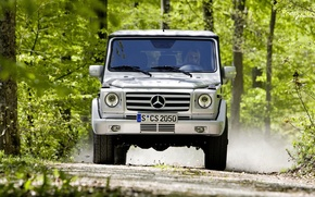 Wallpaper mercedes-benz, Gaelic, forest
