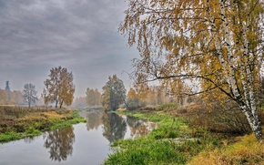 Picture autumn, trees, landscape, fog, river, birch, Golden autumn, Klyazma
