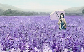 Wallpaper flowers, umbrella, art, umbrella, lavender, girl, field, basket