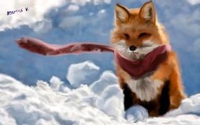 Wallpaper Fox, the wind, Fox, scarf, art