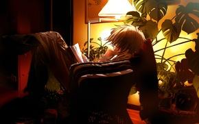 Wallpaper the evening, anime, book