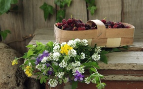 Picture berries, wildflowers, basket, mulberry