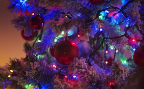 Picture holiday, toys, tree
