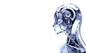 Picture girl, robot, Titan, titanium, titanium