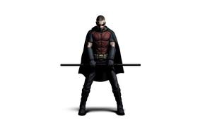 Picture mask, costume, character, Robin, Batman arkham city