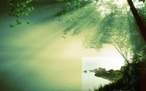 Wallpaper tree, the sun, water, river