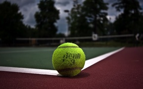 Picture tennis, ball, court