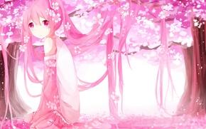 Picture girl, trees, flowers, anime, petals, Sakura, art, vocaloid, sakura, mike