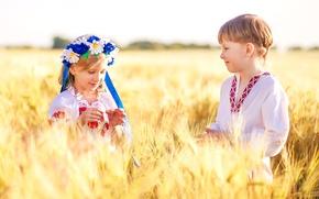 Picture wheat, field, children, chamomile, boy, girl, Ukraine, wreath, Ukrainians