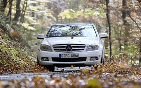Wallpaper mercedes-benz, road, foliage, c350