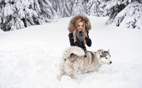 Picture forest, look, girl, snow, dog, blonde, husky