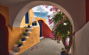 Picture flowers, the building, Greece, patio