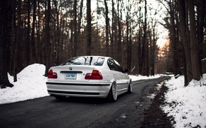 Picture winter, forest, trees, BMW, BMW, white, E46, 325i