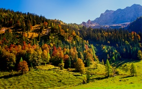 Picture autumn, the sky, trees, mountains, nature, hills, Austria, Karwendel, Tyrol