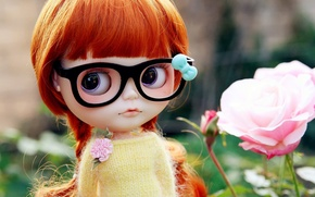 Picture toy, rose, doll, glasses, braids, red
