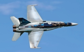 Picture aviation, the plane, CF-18 Hornet