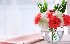 Picture roses, bouquet, chrysanthemum, bouquet