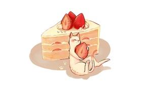 Picture shadow, strawberry, cake, white background, yummy, cream, piece of cake, white kitten