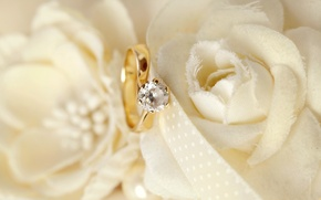 Picture flowers, ring, wedding, flowers, background, ring, soft, wedding, lace