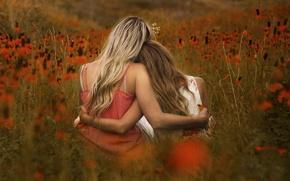 Picture field, flowers, girls, Portrait in Orange
