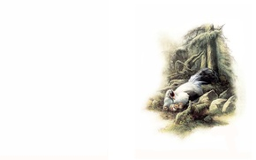 Picture nature, bird, art, sketch, Xiao Zeng, Liang, Zeng Xiao Lian