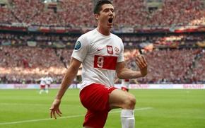 Picture Sport, Football, Football, Euro 2012, Lewandowski