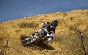 Picture bike, fox, Cycling, freeride, downhill, mtb, led, fullface