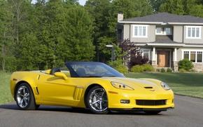 Picture road, trees, yellow, house, Corvette, Chevrolet, Chevrolet, supercar, convertible, Grand Sport, Corvette
