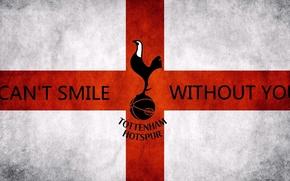 Picture Football, Tottenham, Spurs