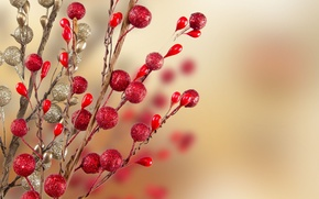 Picture branches, red, background, holiday, Wallpaper, new year, Christmas, blur, wallpaper, new year, widescreen, background, Christmas …
