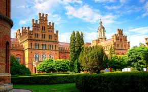 Picture trees, design, lawn, Ukraine, the bushes, University, Chernivtsi