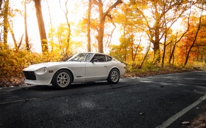 Picture white, road, Datsun, 280z