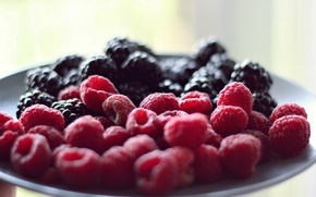 Picture berries, raspberry, background, Wallpaper, food, wallpaper, widescreen, background, full screen, HD wallpapers, widescreen