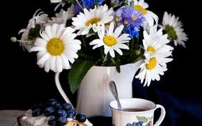 Picture tea, chamomile, blueberries, still life, cornflowers, cupcake, Anna Verdina
