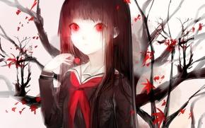 Picture leaves, girl, branch, anime, art, form, schoolgirl, sayuki, hell girl, enma ai, hell girl