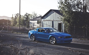 Picture The sun, Mustang, Ford, Blue, Wheel, Ford, Muscle, Mustang, Car, Blue, Sun, 5.0, Before, Wheels