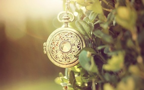 Picture greens, metal, pattern, watch, chain, pocket