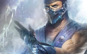 Picture ice, Mortal Kombat, ninja, Sub-Zero