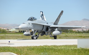 Picture fighter, Hornet, F-18C, McDonnell Douglas