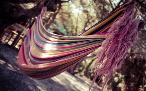 Picture nature, stay, hammock, fabric