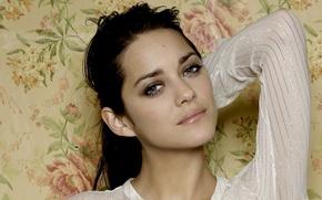 Picture pose, actress, brunette, blue eyes, blue-eyed, hair, Marion Cotillard, Marion Cotillard, makeup. make up