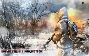 Picture winter, the game, congratulations, survarium