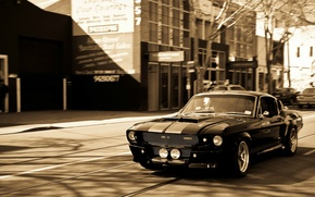 Picture Ford, black, 1967, sepia, Mustang GT 500